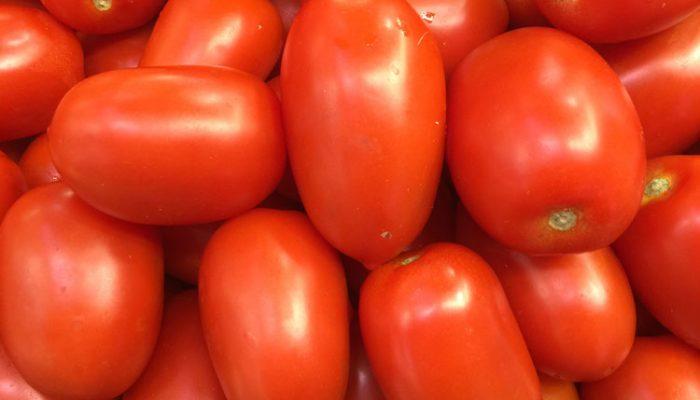 tomatos_750x562